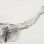 part-braccio